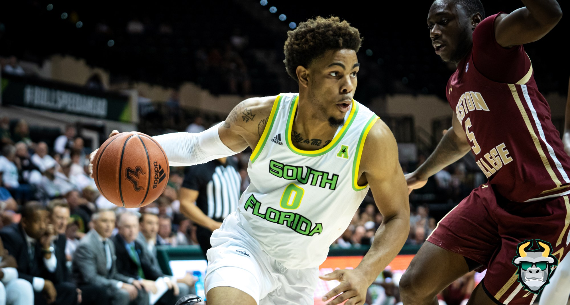 #SoFloDrip Boston College vs. South Florida Men's Basketball 2019 Photo Album ReCap - David Collins SoFloBulls.com