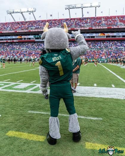 29 Florida vs USF 2021 - Rocky D. Bull DRG01153