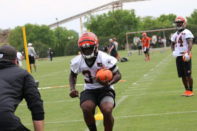 Cincinnati Bengals HB Quinton Flowers at Rookie Camp 2018 (1280x853)