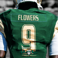 🎥 SoFloBulls.com 2017 USF Football Highlights Series: #Glock9 QB Quinton Flowers