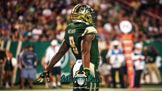 🎬 WATCH: SoFloBulls.com 2017 USF Football Highlights Series: #Ocho WR Tyre McCants by Matthew Manuri