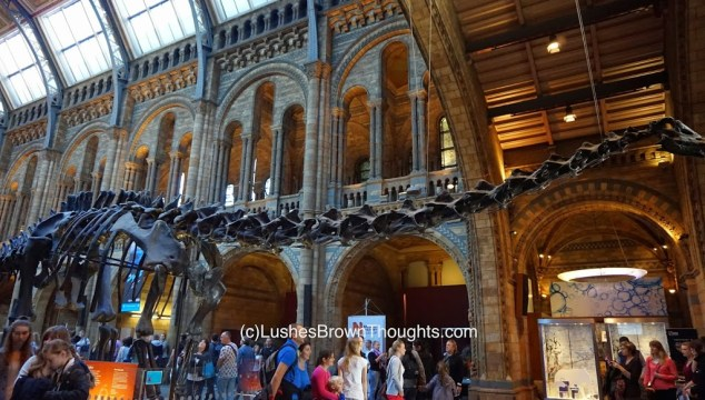 Buskers and Dinosaurs Natural History Museum