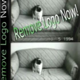 Easy Video Logo Remover 1.3.7 Full Crack