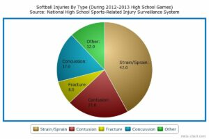 softballpieChart_jpg