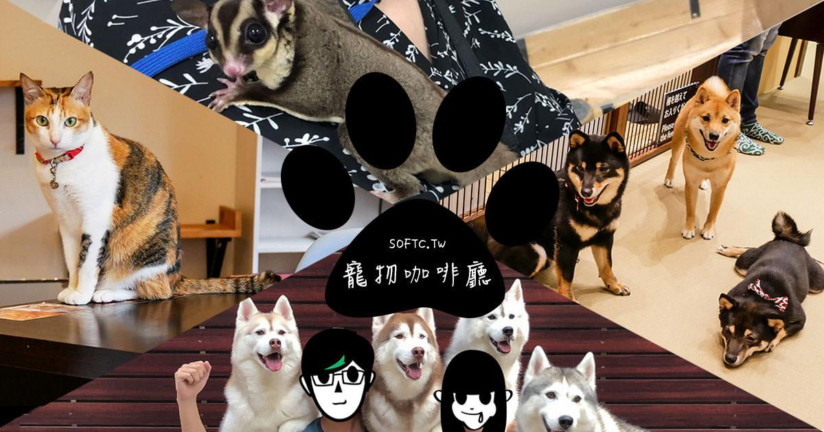 跟毛孩一起喝咖啡!亞洲最萌寵物咖啡廳》來被療癒柯基/哈士奇/柴犬/貓咪/水獺圍繞吧! 狗奴貓奴都瘋狂的寵物咖啡廳