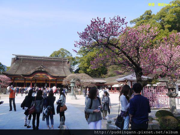 [福岡][Day1]太宰府天滿宮 走過商店街吃梅枝餅 來到日本孔廟之稱的天滿宮散步囉