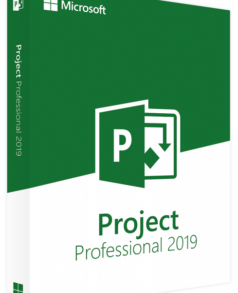 Buy Online Microsoft Project Professional 2019 Software | 1PC-License