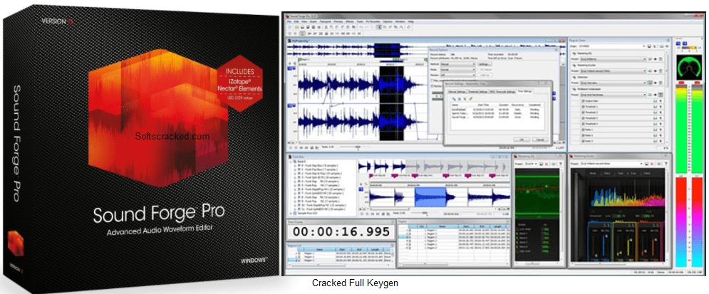 Torrent sound forge Download Latest