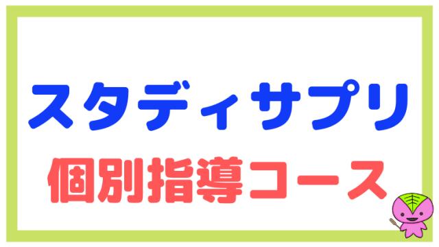 【中学生】スタディサプリ個別指導コースの概要をまとめた【違い】