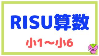 RISU算数の特徴と複雑な料金体系について解説【高い?】