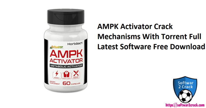 AMPK Activator Crack Mechanisms With Torrent Full Latest Software Free Download