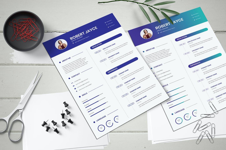 Business Resume CV