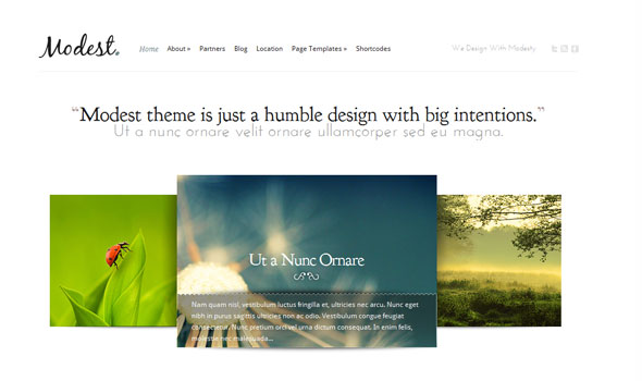 Elegant Themes Modest