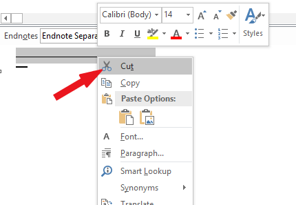 Select and delete the endnote line