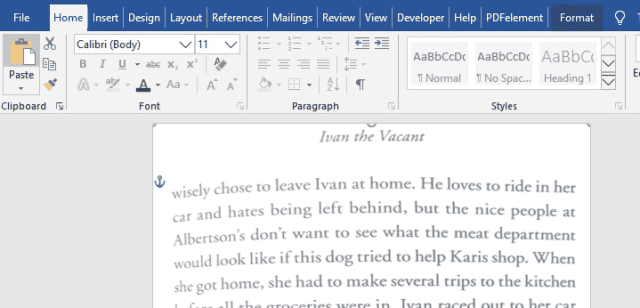 adjusting the size of the image in Word