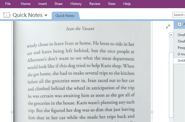 picture inserted in OneNote