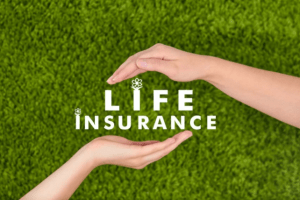 Best life insurance companies of 2021