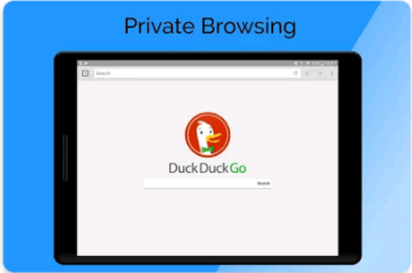 Private Browser for PC