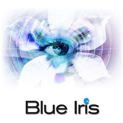 Blue Iris 5.3.8.15 Crack With Keygen Torrent (2021)