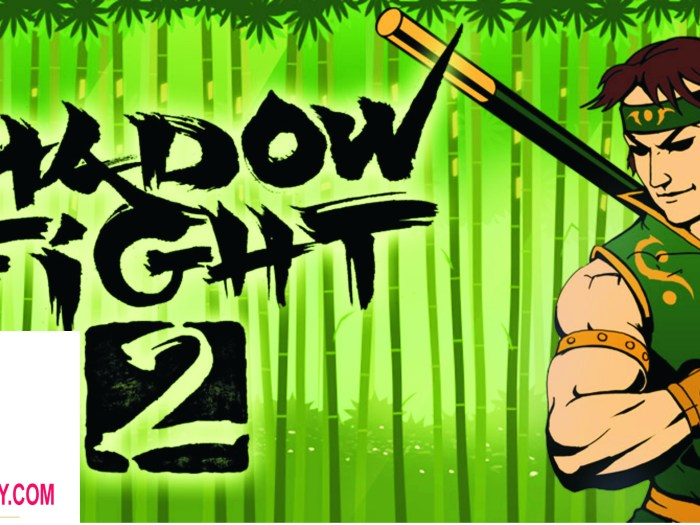 Shadow Fight 2 1.9.30 APK for Android Full Free Download