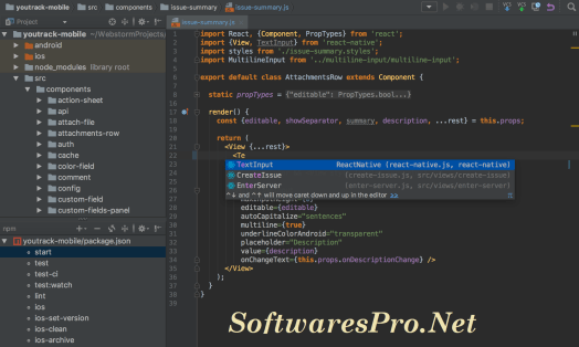 WebStorm 2018 License Key