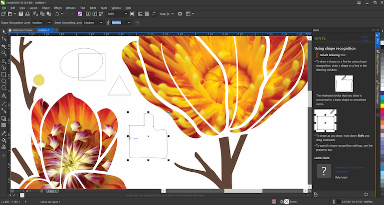 CorelDraw X8 Crack With Serial Number Free Download