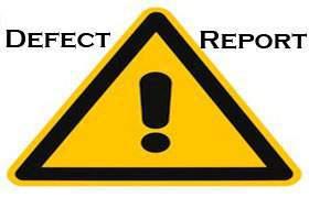 Defect Report