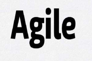 Agile Software Development Process
