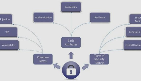 Website Security Testing Concepts