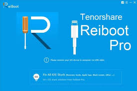 Tenorshare ReiBoot Pro 7.3.13.3 Crack with Serial Key 2020 Free Download