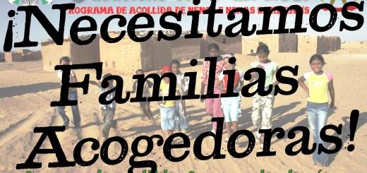 Necesitamos familias acogedoras para vacaciones en paz