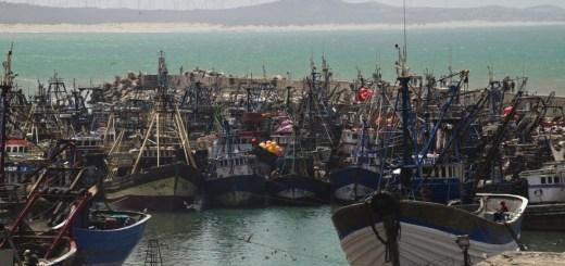 Tratado de Pesca