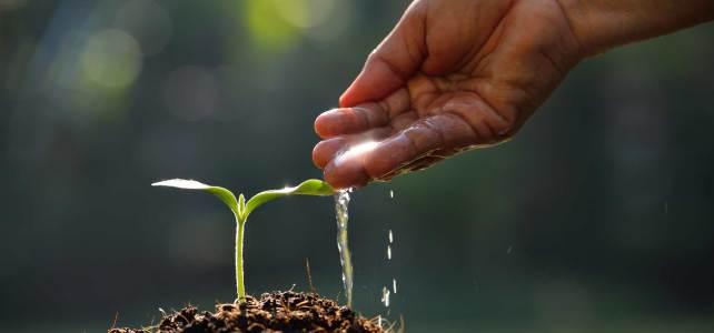 Una risposta sciamanica e spirituale ai disastri ambientali e alle catastrofi naturali