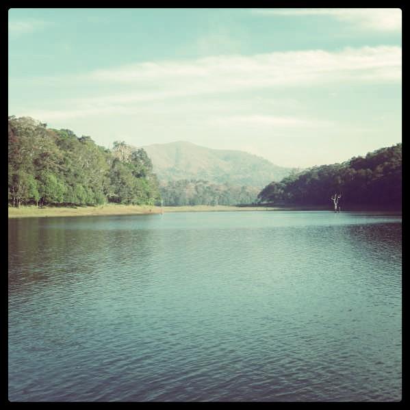 Enchanting Kerala - A Picturesque Journey (5/6)