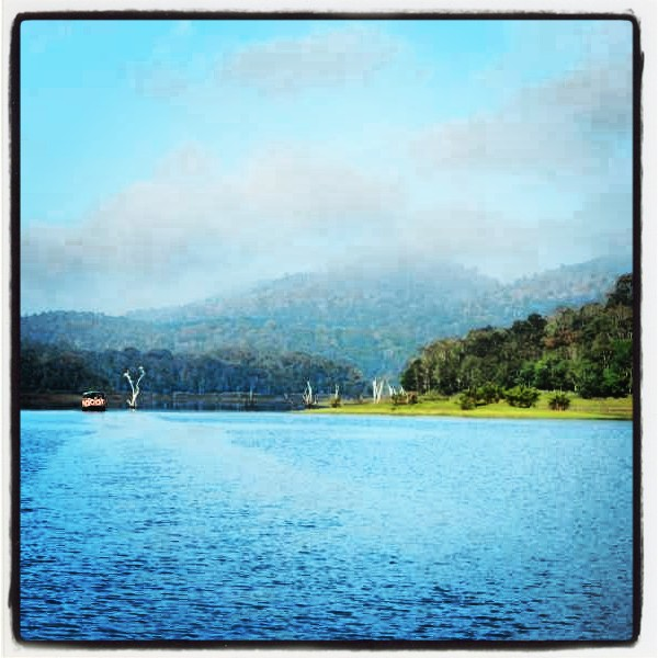 Enchanting Kerala - A Picturesque Journey (6/6)