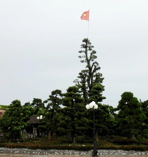 Cận cảnh dinh thự lớn nhất Nam Bộ của đại gia Trầm Bê - Ảnh 4.
