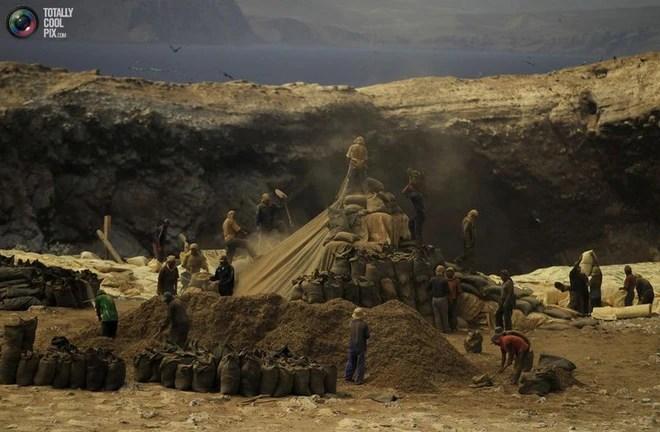 Hành trình khắc nghiệt tại hòn đảo làm giàu bằng phân chim, tạo cơn sốt khắp châu Âu - Ảnh 1.