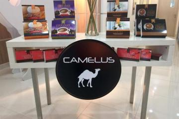 display booth camelus