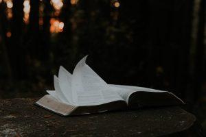 Livre ouvert page qui se tourne