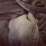 THE SOFTEST BLANKET EVER!!