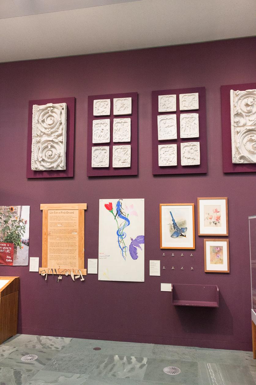 Millenium Gallery à Sheffield