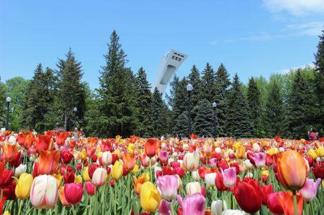 Le jardin botanique de Montréal