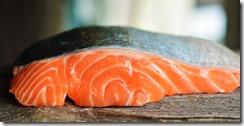 saumon sauvage ou elevage