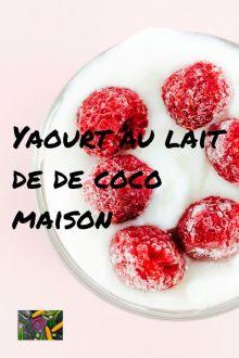 faire des yaourts au lait de coco sans yaourtiere