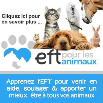 EFT pour animaux