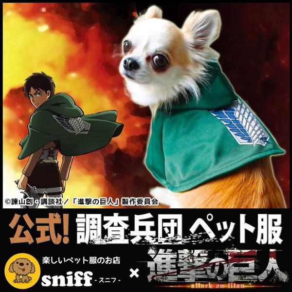 dog-sniff_d09507065-atancp