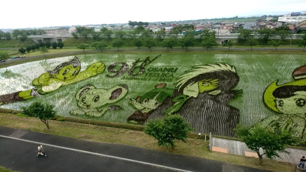 Town's rice paddy art features Astro Boy and other classic Osamu Tezuka characters