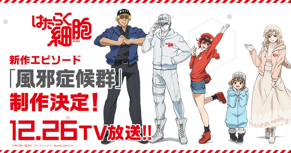 New Cells At Work! anime episode announced for 26th December