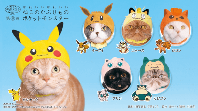These new cat hoods can turn your felines into Pokemon