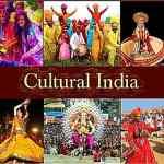 ভারতীয় জাতি